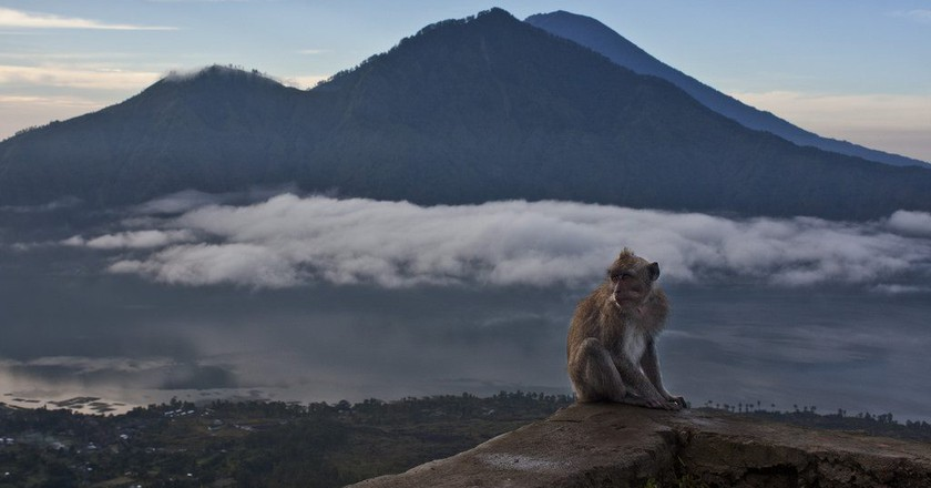 Must-visit attractions in Bali   © Martin Garrido / Flickr