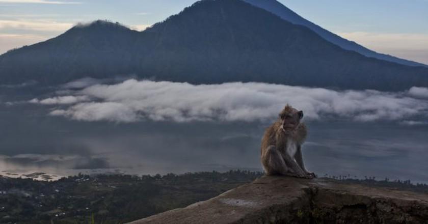 Must-visit attractions in Bali | © Martin Garrido / Flickr
