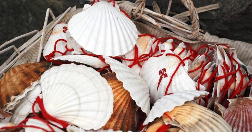 Camino shells   ©Dan Convey / Coffee & Caminos