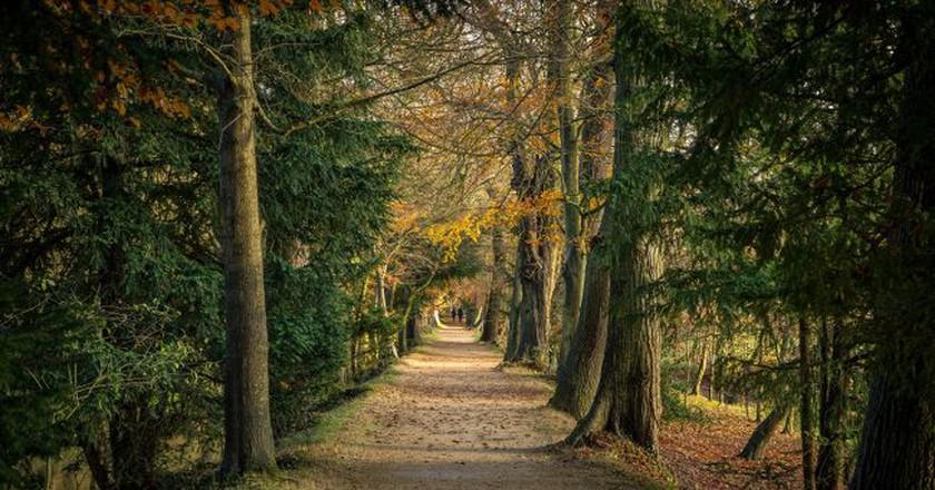 Magdalen College   © Adrian Scottow/Flickr