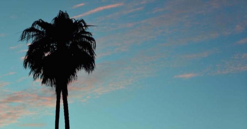 Los Angeles | © Chris Yarzab / Flickr