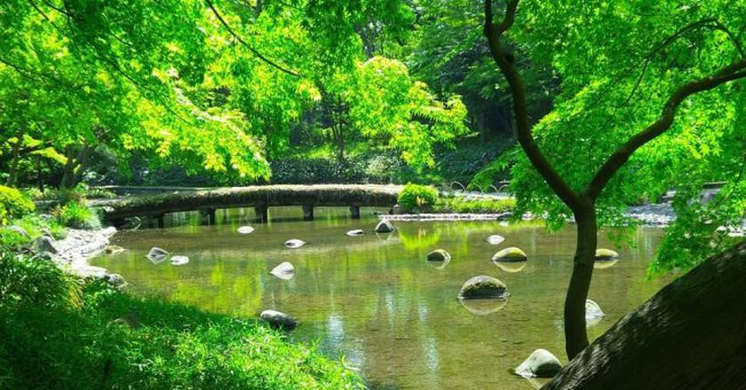 Japanese garden in summer   © FranckinJapan/Pixabay