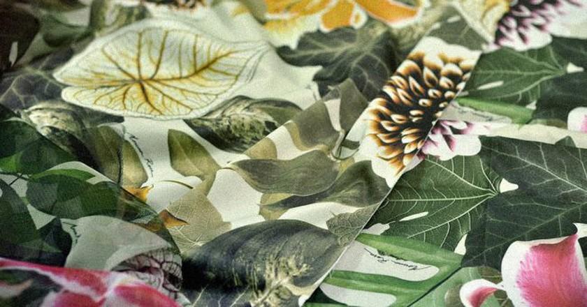 Tropical prints © Alex Portes/Flickr