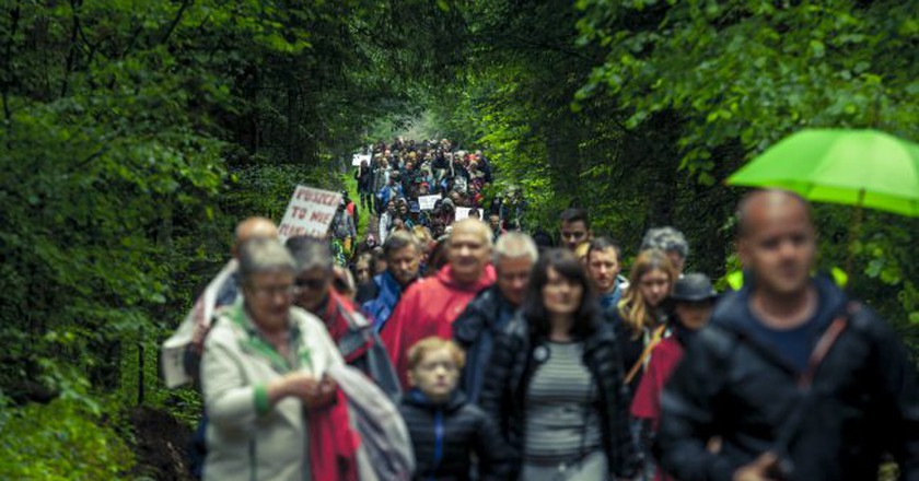 People marching for the preservation of Białowieża forest | © Rafał Wojczal / Flickr