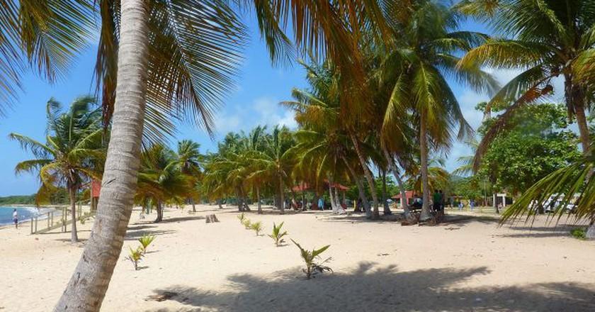 A beach in Vieques, Puerto Rico | © Jirka Matousek/ Flickr