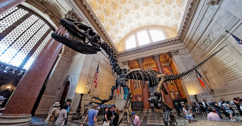 American Museum of Natural History l Don DeBold/Flickr