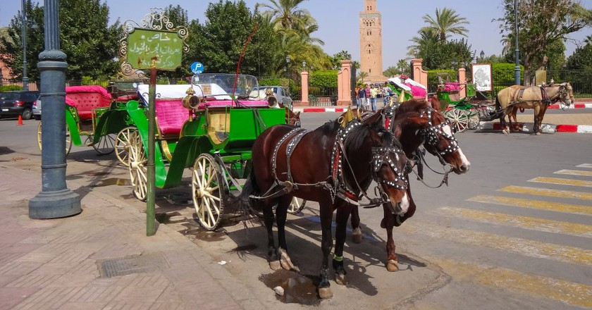 13 Facts That Will Change What You Think About Morocco