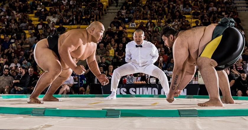 Byambajav Ulambayar (left) won the heavyweight and openweight gold at the 2016 U.S. Sumo Open | © USA Sumo/Dustin Snipes