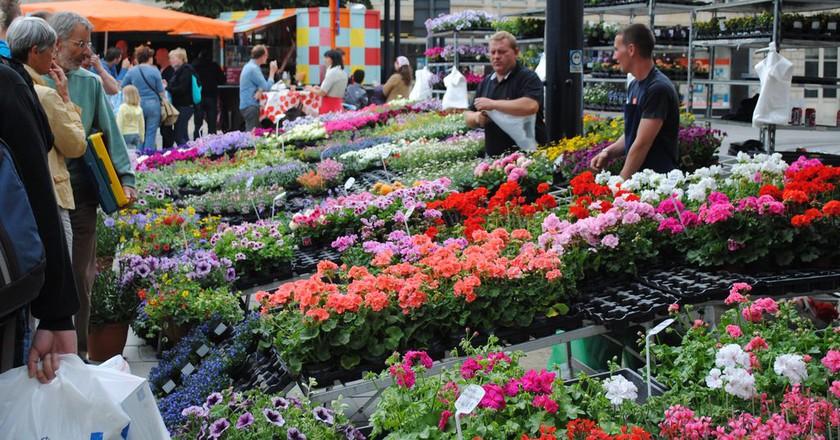 Flower market on Ghent's Kouter square | © bookfinch / Flickr