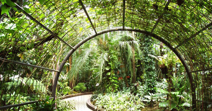 The Best Parks and Gardens to Visit in Germany