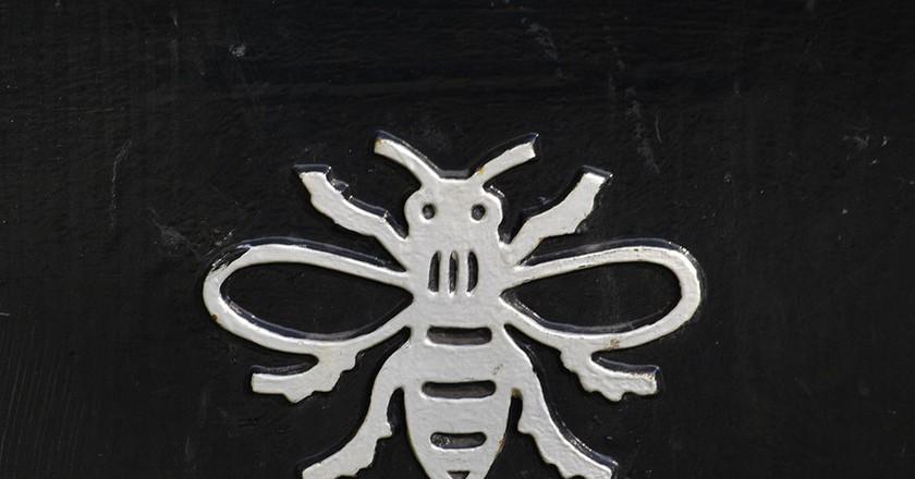 Manchester Bee | BriYYZ / Flickr