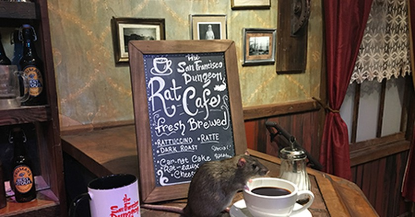 The Rat Cafe | Courtesy of The San Francisco Dungeon