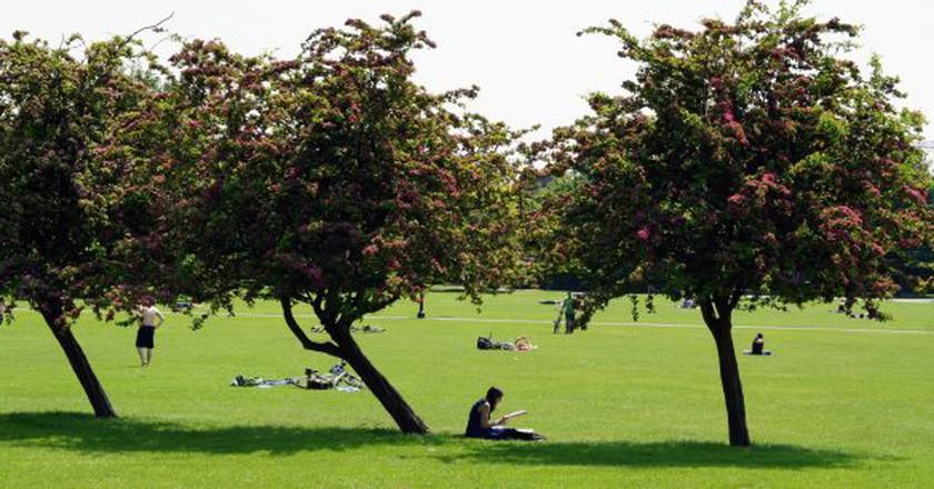 Reading in the park, London | © Leslie Archard/Flickr
