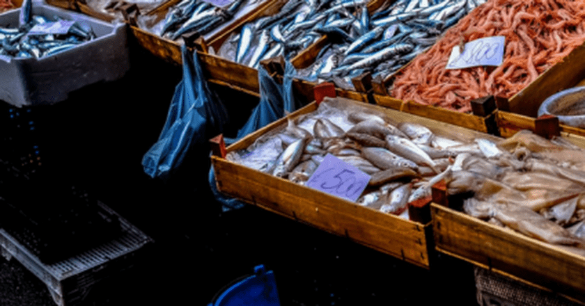 "<a href = ""https://www.pexels.com/photo/street-market-market-fish-fish-market-96379/""> Fish Market 