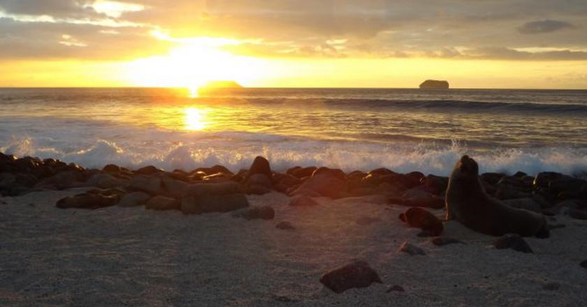 The Galapagos | ©pantxorama  | Flickr