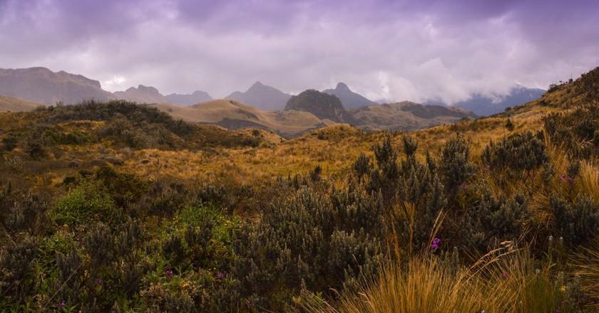"<a href=""https://www.flickr.com/photos/43555660@N00/16461018236/"" target=""_blank"" rel=""noopener noreferrer"">Cayambe Coca National Park, Ecuador   © Carine06 / Flickr</a>"