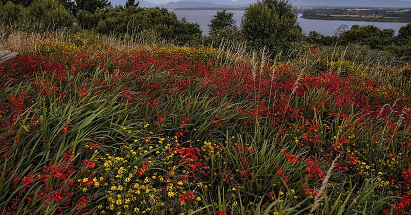 Puerto Varas   © Dan Lundberg/Flickr