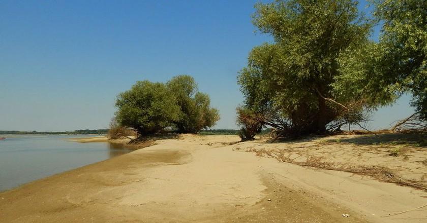 Batin island in the Danube River, Bulgaria   © Iliana Teneva/WikiCommons