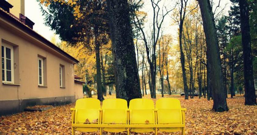 Autumn in Antakalnis  © Mindaugas Danys/Flickr