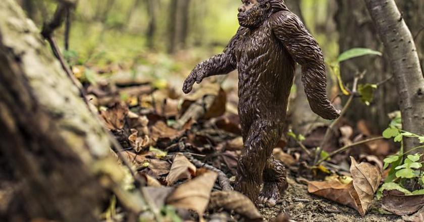 A Sasquatch figurine | © Ryan McGuire / Pixabay