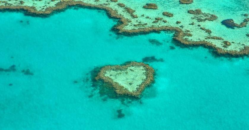 https://pixabay.com/en/heart-coral-australia-coral-reef-1492445/