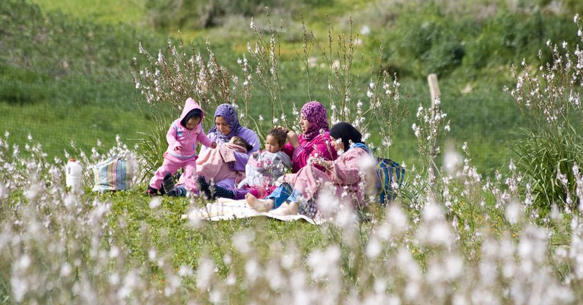 Moroccan women and children enjoying a springtime picnic   © Dimitry B./Flickr