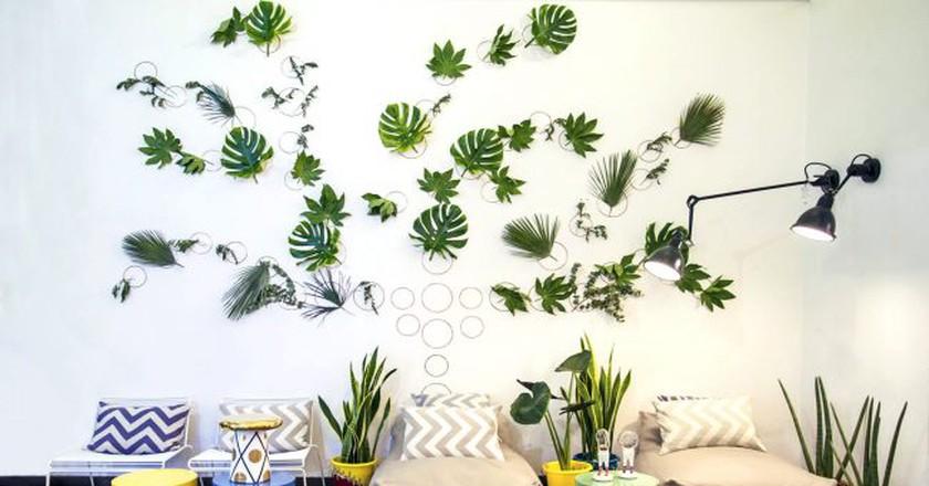 Mia Home Design Gallery   © Courtesy of the Venue