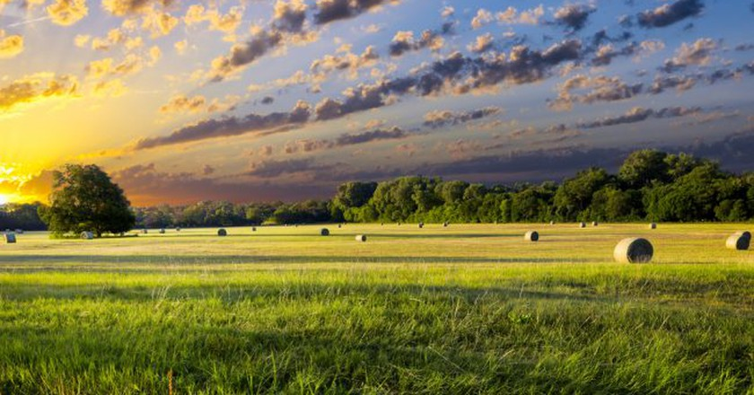 Tranquil Texas meadow at sunrise with hay bales strewn across the landscape   © Dean Fikar / Shutterstock