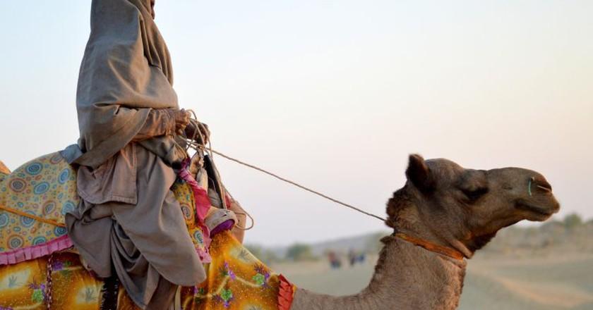 Thar Desert | © Abigail Becker/Flickr