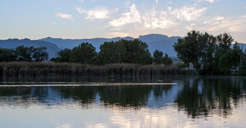 Floyd Lamb Park   © Andrew / Flickr