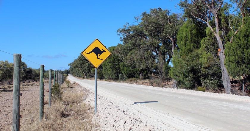 https://pixabay.com/en/australia-kangaroo-road-shield-2282288/