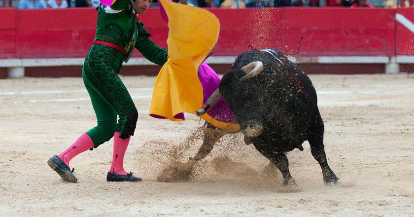 Bullfight   © caropat/Pixabay