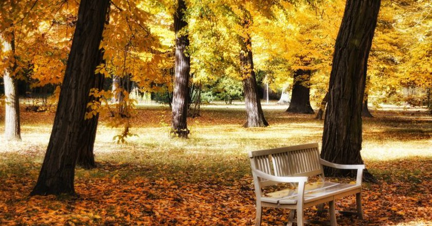An autumn stroll in a Berlin park | ©Pixabay