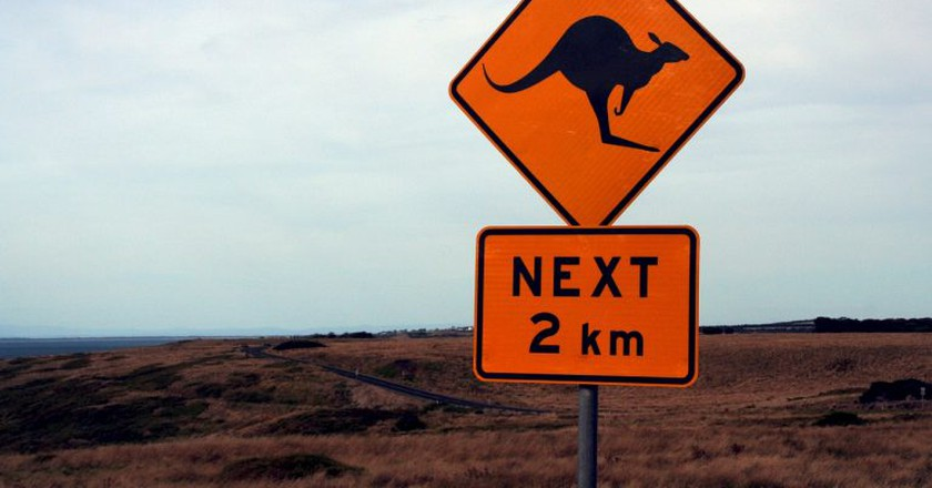 https://pixabay.com/en/shield-street-sign-warning-288565/