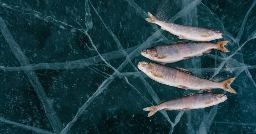 Winter fishing on Lake Baikal | © Ivandan/Shutterstock