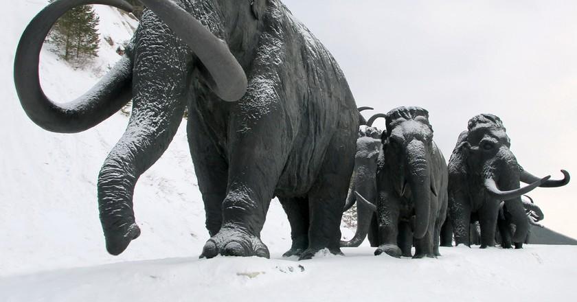 Mammoths, Mansiysk |  ©Valsib / Shutterstock