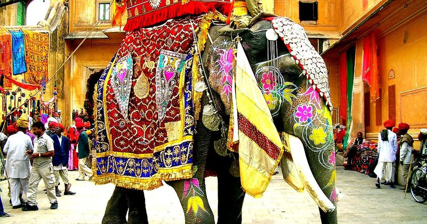 Decorated Indian Elephant © Faraz Usmani | Wikimedia.org