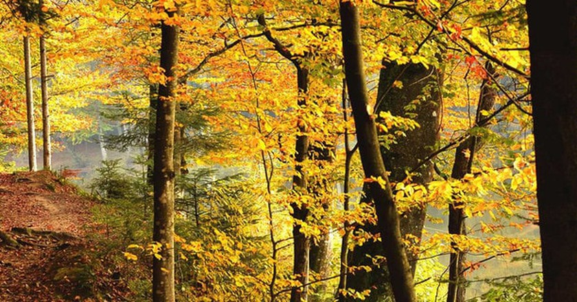 Medvednica autumn walk | © Raftrek Adventure Travel/Flickr