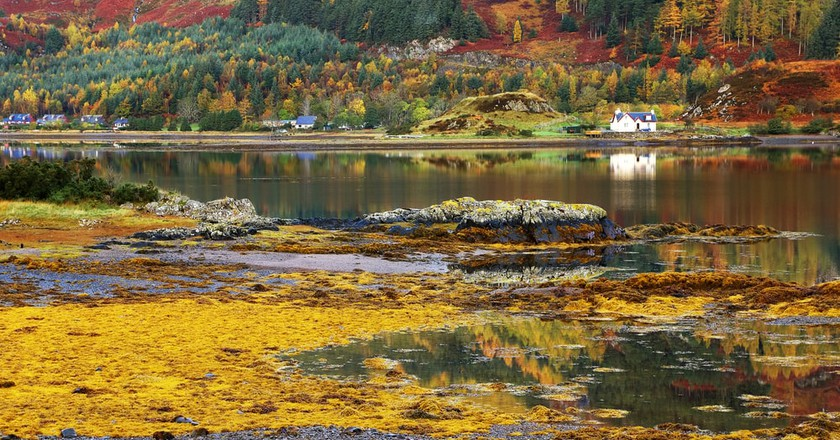 A Nature Lover's Guide to Scotland