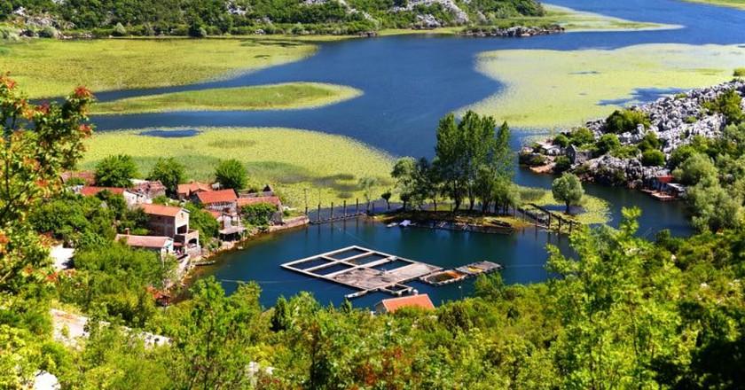 Skadar Lake   © monticello/Shutterstock
