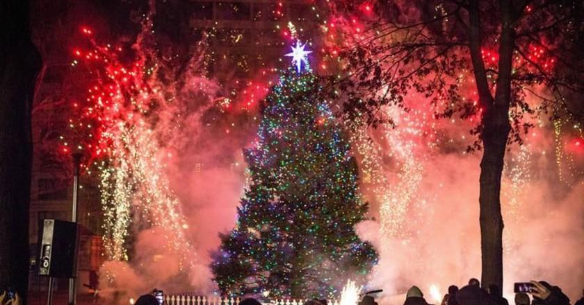 Tree Lighting in Halifax | Courtesy of Communications Nova Scotia