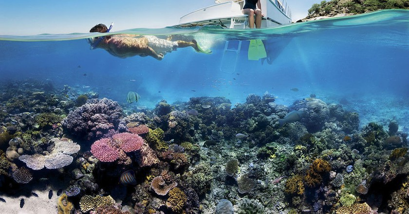 https://commons.wikimedia.org/wiki/File:Reef_Snorkelling_on_the_Great_Barrier_Reef.jpg