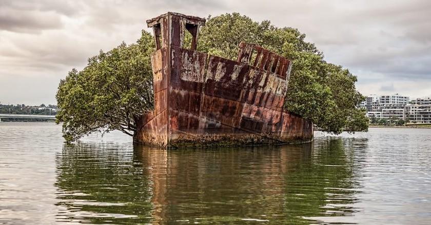 SS Ayrfield | © Marc Dalmulder/Flickr