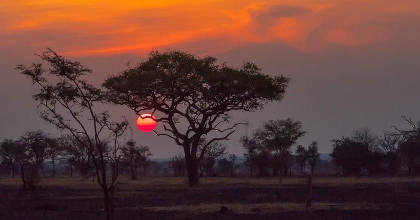 Sunset over the Serengeti   © Anita Ritenour/Flickr