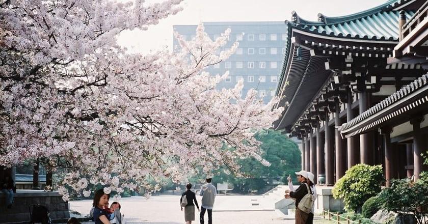 Fukuoka   © Peter Enyeart /Flickr