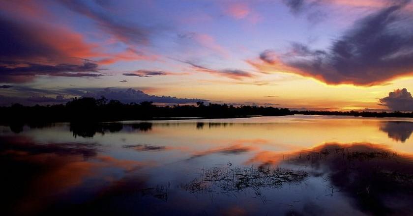 Jaú National Park   © Diego Lezama/WikiCommons