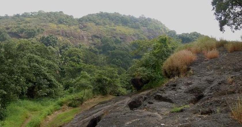 Sanjay Gandhi National Park | © Patrice78500 / WikiCommons