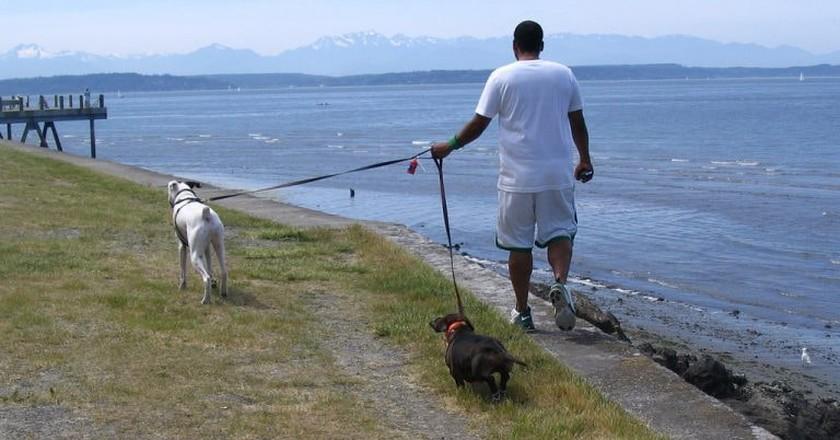 Stroll Along Alki Beach   © D Coetzee / Flickr