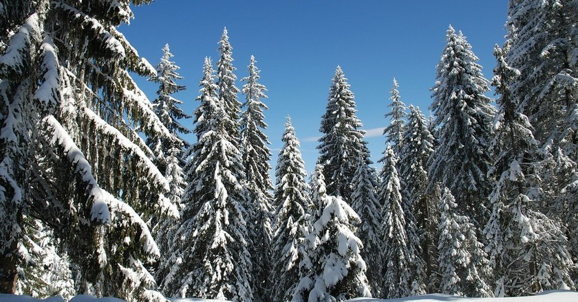 The 10 Best Places to Stay in Pamporovo