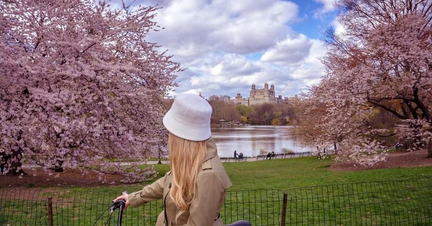 New York City | ©Olichel / Pixabay